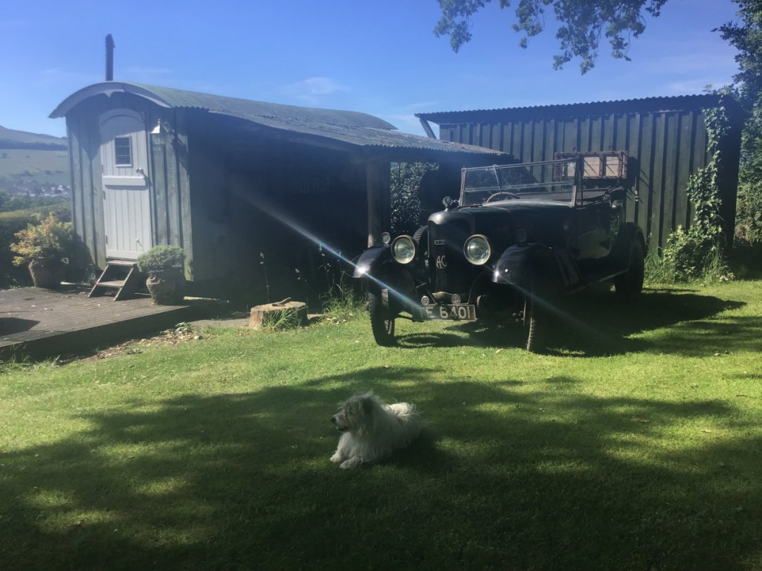 classic car, harry the dog and garden hut